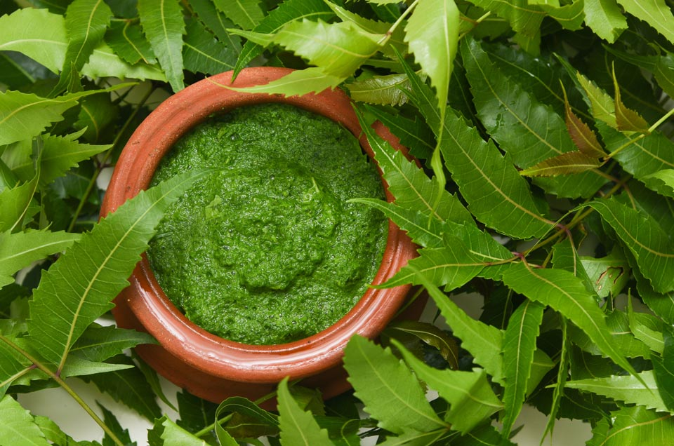 2 Easy Ways to Nourish Your Hair With the Goodness of Neem