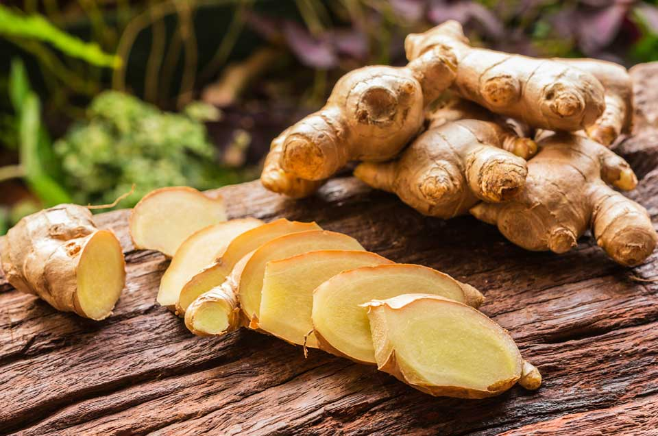 Ginger The Healing Spice Of Ayurveda