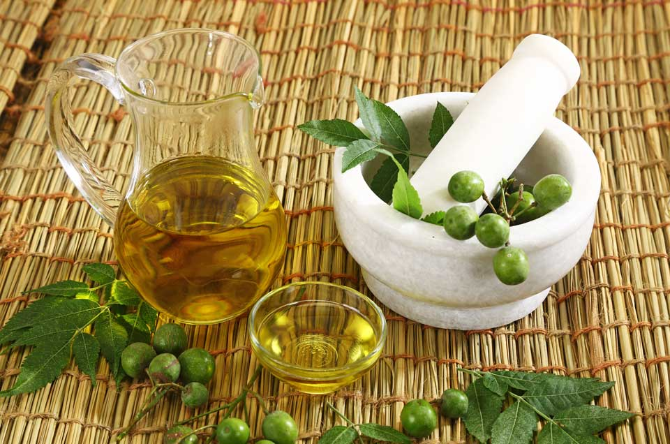 5 Reasons Why You Should Use Neem Oil in Your Everyday Routine