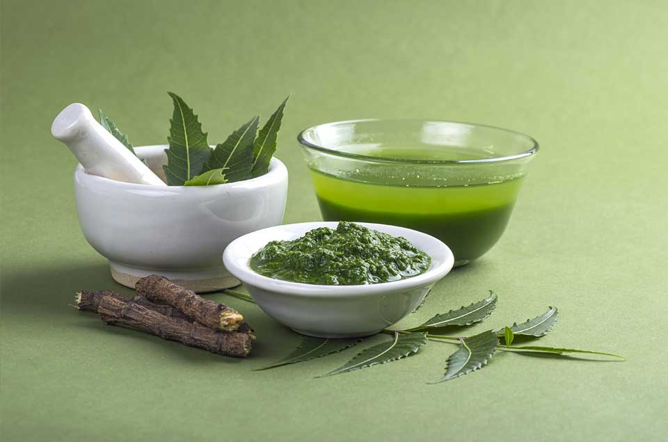 Hair Loss Treatment with Ayurveda