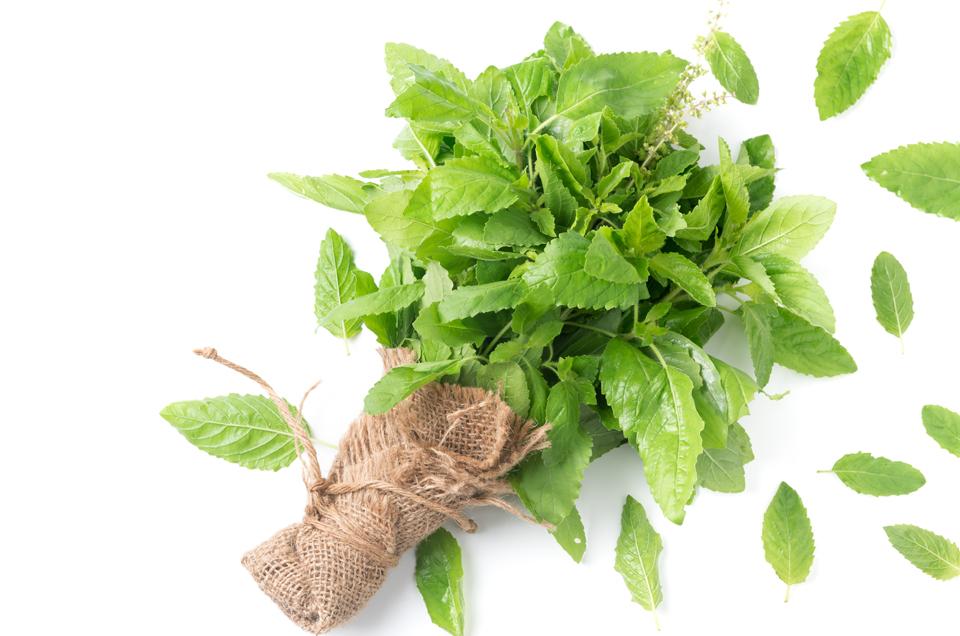 Ayurvedic Herbs That Boost The Functioning of Pancreas