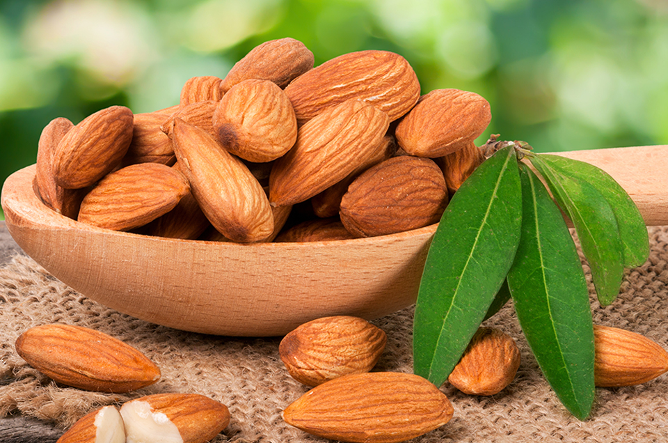 Why You Should Eat Almonds Everyday