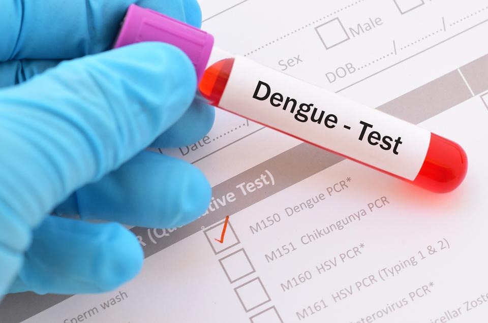 डेंगू – एक चेतावनी!