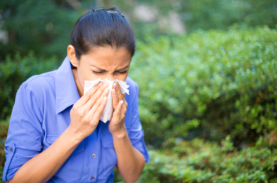 Coping with Seasonal Allergic Rhinitis (Hay Fever)