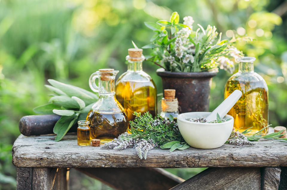 5 Herbs for Mental Clarity and Relaxation