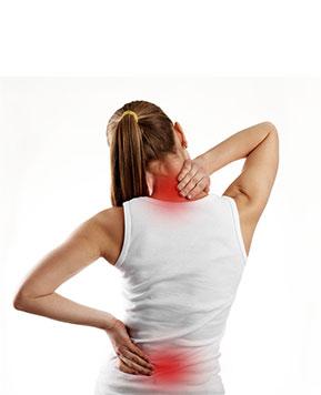 Rigid neck and spine